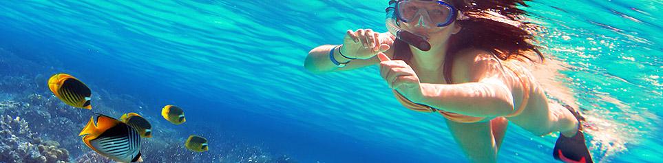 Tauchen und Schnorcheln auf den Fijis