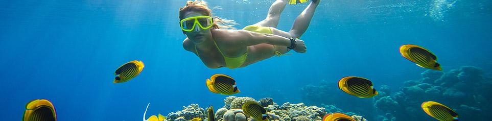 Tauchen Neukaledonien